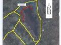 Amphibienschutzgebiet Grutholzteich